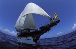 Th SY Jambo based out of Mombasa kenya under full sail  by Andrew Woodburn